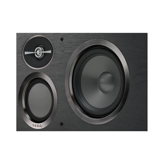 "Reference RC263 - Black - Dual 6-1/2"" 3-Way Center Channel Loudspeaker - Detailshot 2"